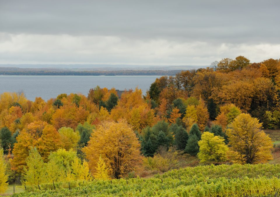 Traverse City Michigan