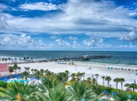 Festivals and events in Clearwater