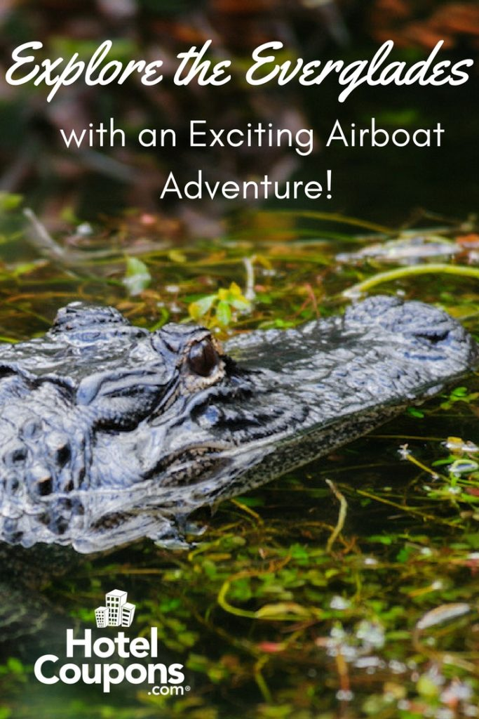 Explore the Everglades Pin