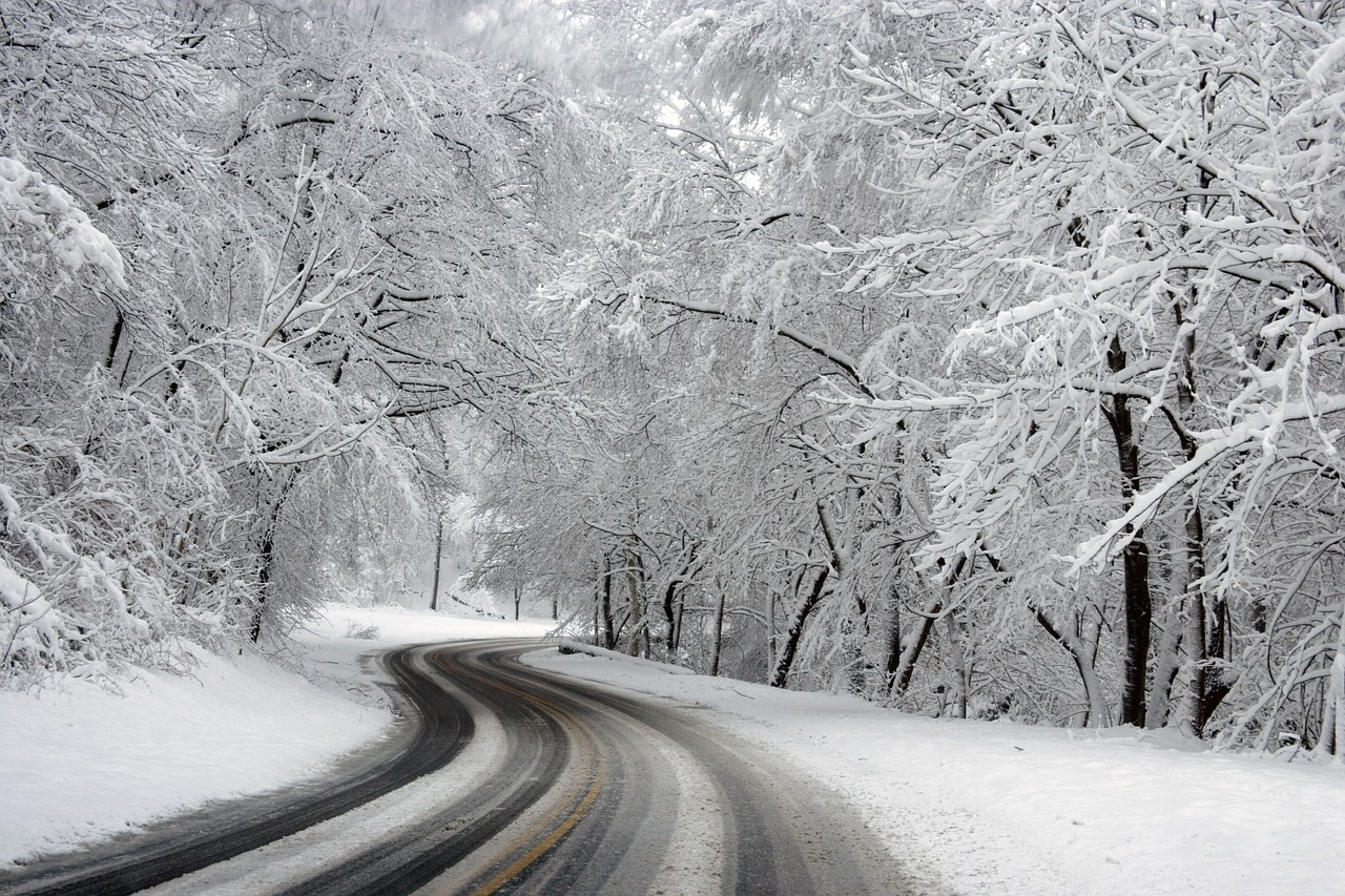 snow scene on a winding road