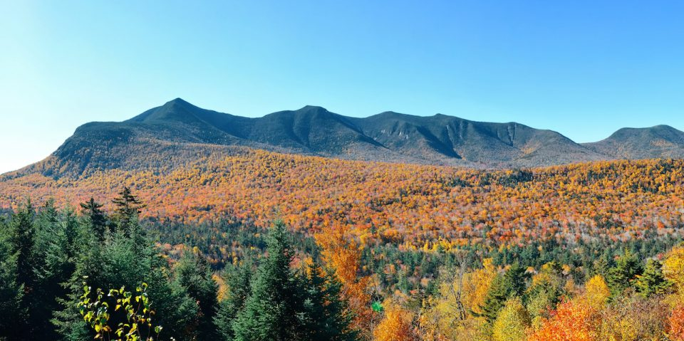 Colorful Autumn foliage in White Mountain, New Hampshire.