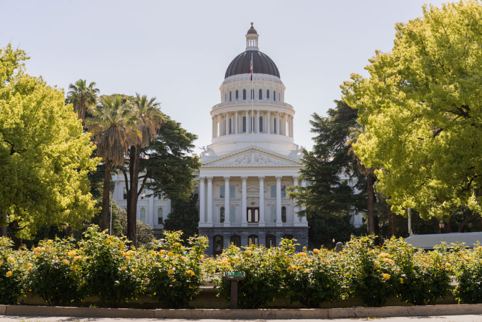Backlit morning scene of the front of the California State Capitol building in the capital of Sacramento with roses framing the scene