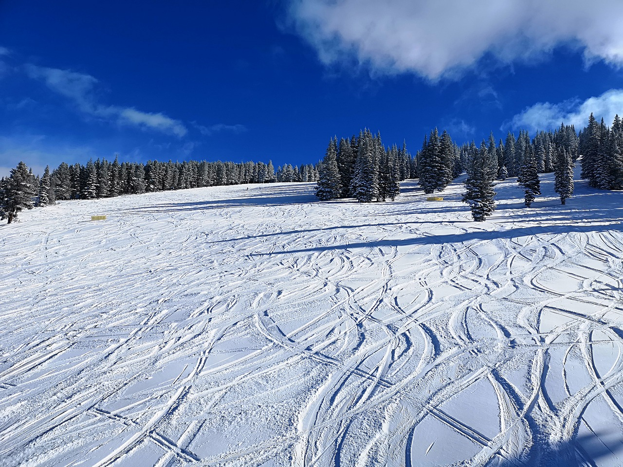 Skiing at the Vail in Colorado