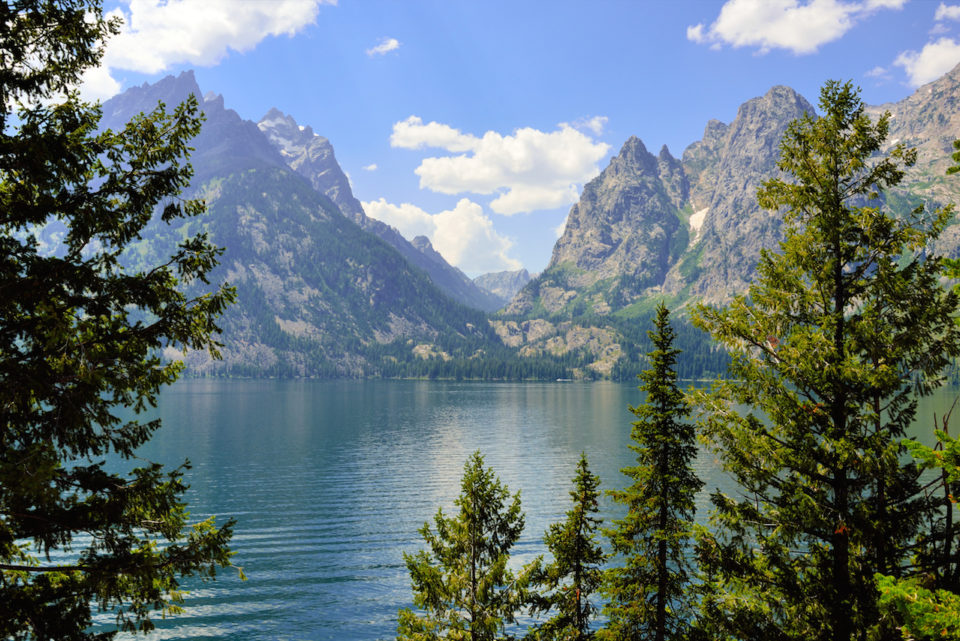 Jenny Lake and mountains of the Grand Teton National Park Wyoming in Summer